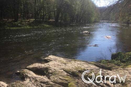 Ourthe Ardennen (2019) Rotsen in de Ourthe